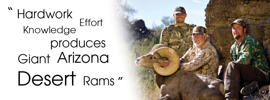 Arizona Desert Sheep Outfitters